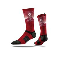 Picture of Alabama Sock Crimson Tide Crew Premium Reg