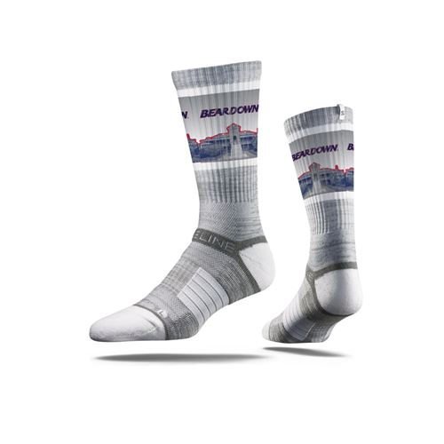 Picture of Arizona Sock Beardown Grey Crew Premium Reg