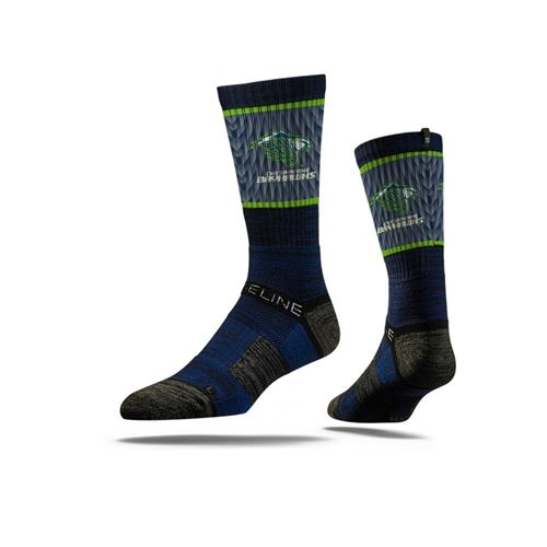 Picture of Chesapeake Bayhawks Sock Navy Crew Premium Reg