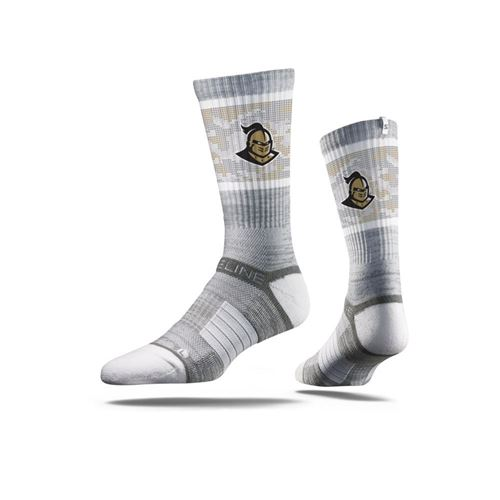 Picture of Central Florida Sock Grey Knightro Crew Premium Reg